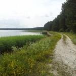 Tee järve kaldal ehk tulevane promenaad