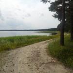 Ülemiste järv ja mets