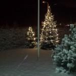 Koduaia jõulukuused 22.detsembri 2014 hommikul