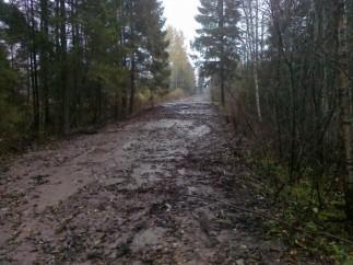 Metsatee sai silutud, mis edasi?!