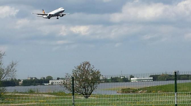 Ülemiste järve ohustavad lennukid ja autod, mitte jalakäijad